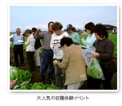 収穫の体験イベント