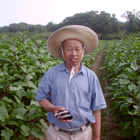 茄子の生産者