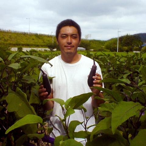 茄子生産者の野沢さん