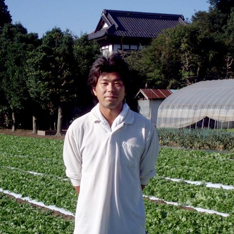 レタス生産者の菊田さん