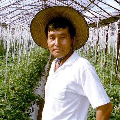 トマト生産者3