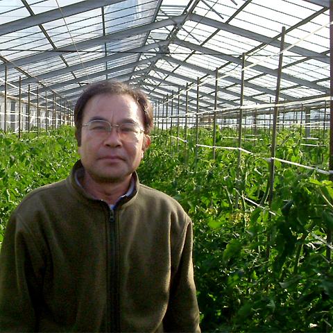 トマト生産者の吉原さん